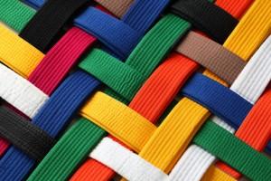 Belts matrix